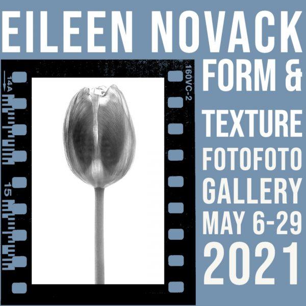 Eileen Novack- Form & Texture