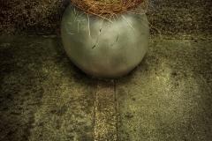 Yard Art - pchiarelli ,Yard Art - pchiarelli