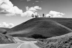 1Massi_Route-41
